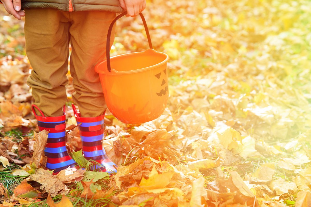 little boy with rubber boots at fall